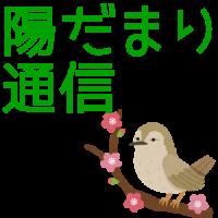 hidamari_catch_04
