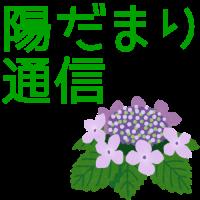hidamari_catch_06