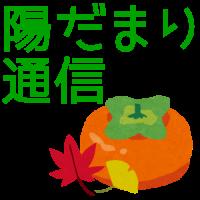 hidamari_catch_10